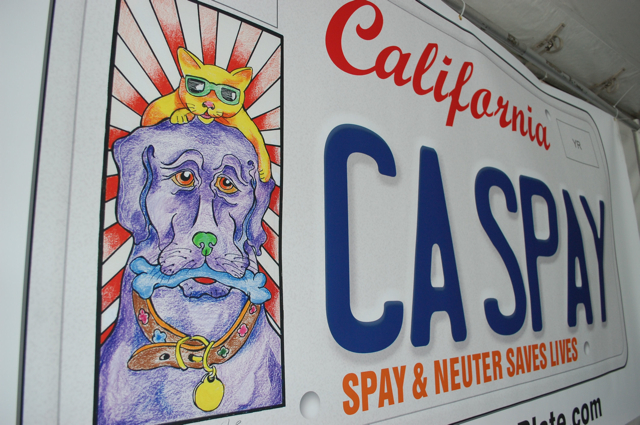 pet lover's spay neuter license plate