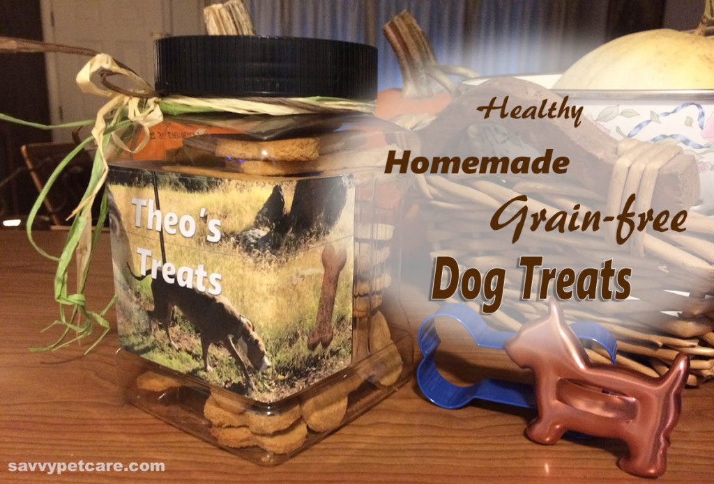 Healathy, homemade, grain-free dog treats in DIY treat jar
