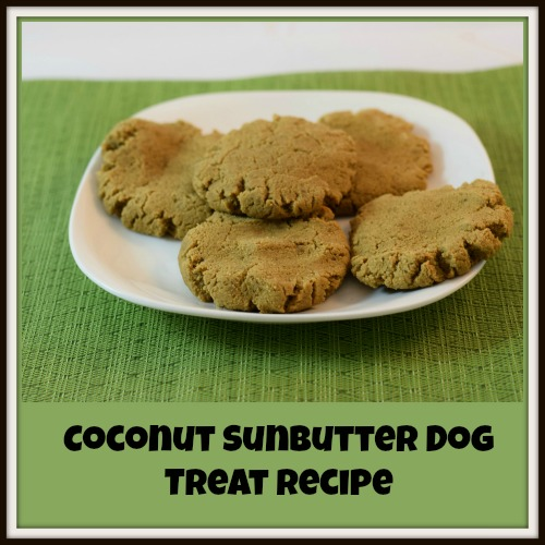 Coconut-Sunbutter-Dog-Treat-Recipe