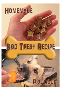 Dog Treat Recipe Roundup photo