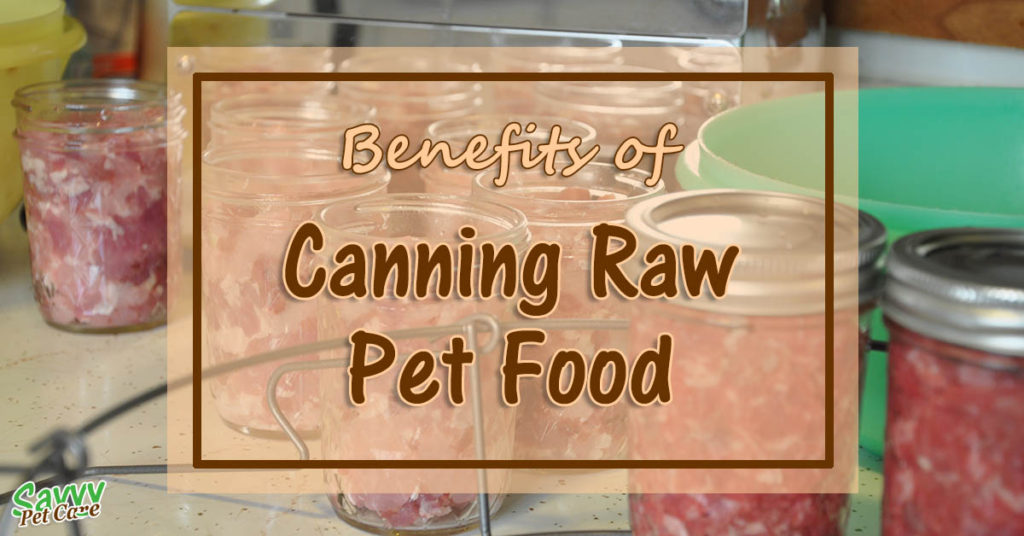 Benefits of Canning Raw Pet Food There are a few good reasons why canning raw pet food is something you might want to consider. Read about the benefits of canning raw food.