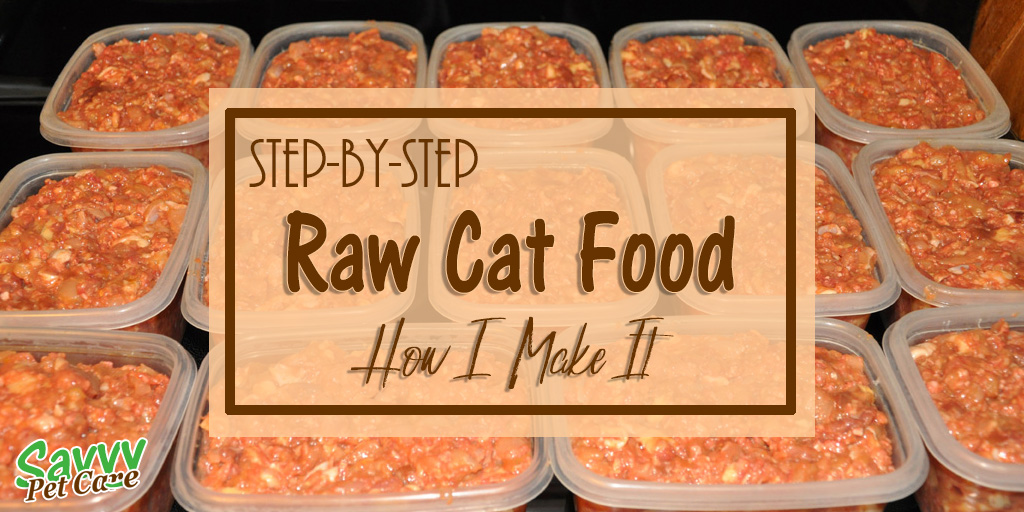 Feeding archives savvy pet care raw cat food how i make it forumfinder Choice Image