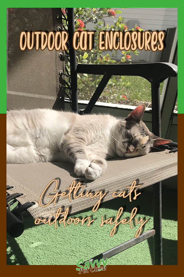 cat sunning chair on screened porch with text overlay: Outdoor cat enclosures Getting cats outdoors safely