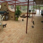 Outdoor Cat Enclosures - Getting Cats Outdoors Safely
