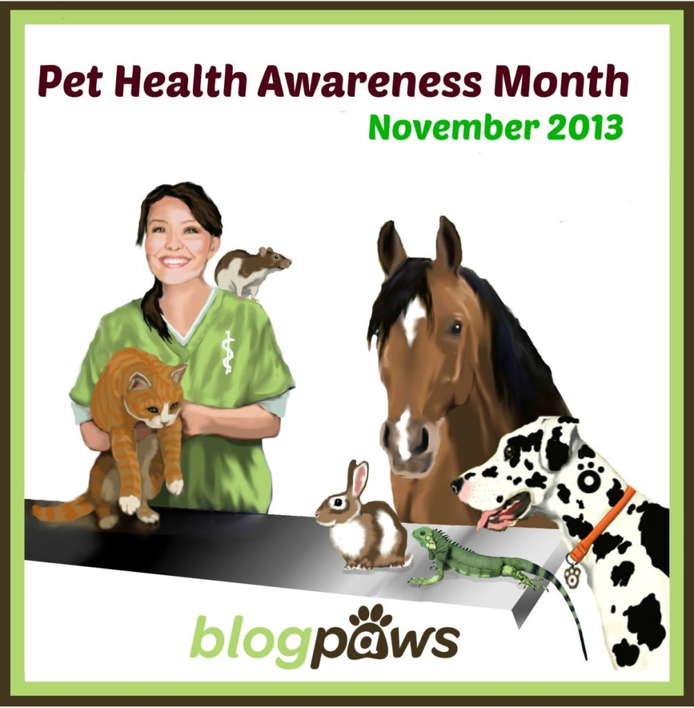Pet Health Awareness Month