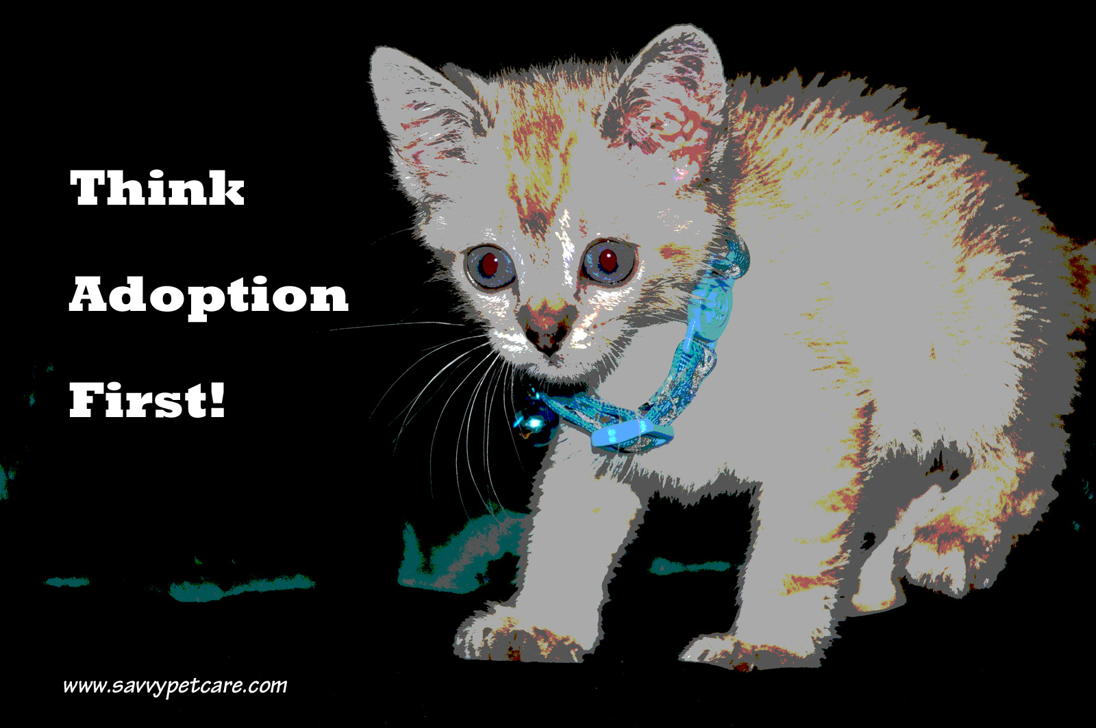 Wordless Wednesday: Think Adoption First!