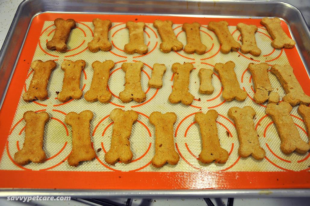 Dog bone biscuits on cookie sheet