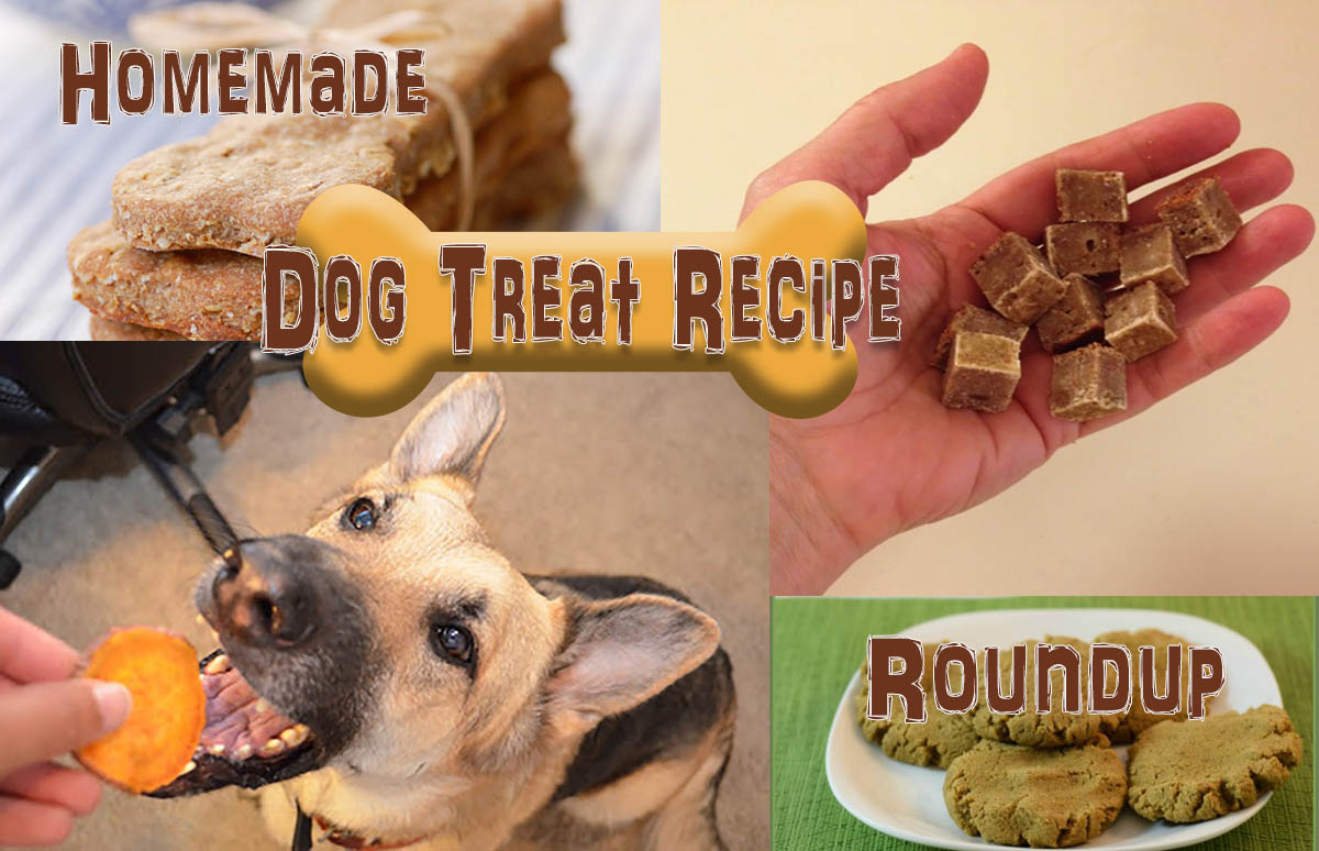 Homemade Dog Treat Recipe Roundup