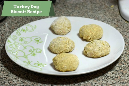 Turkey-Dog-Biscuit-1