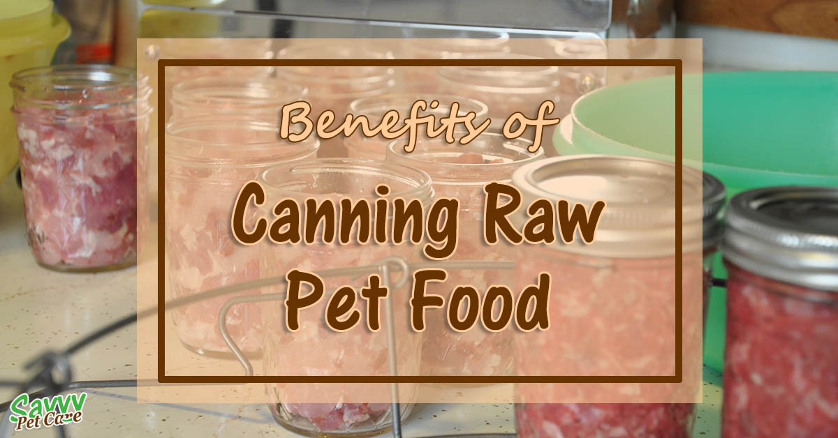 Canning Raw Pet Food - Why Do It?