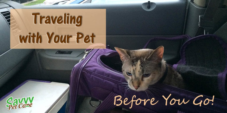 Traveling with Your Pet -- Before You Go