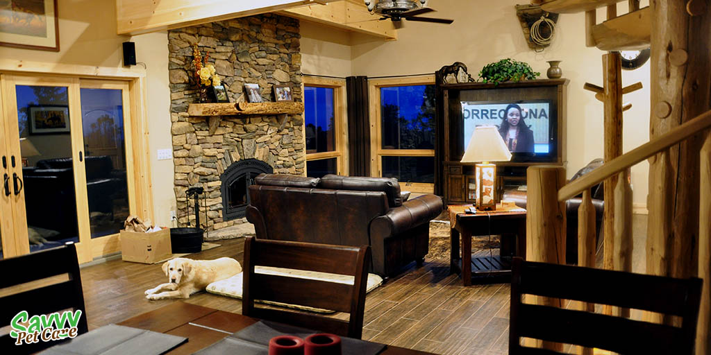 Dog Friendly Vacation Rental In Gold Country Savvy Pet Care